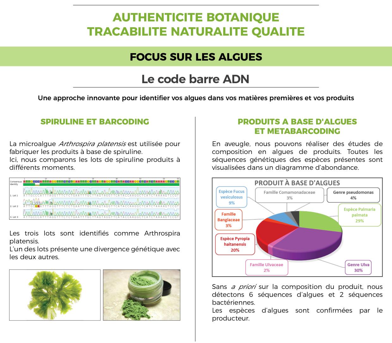 Identification Algues