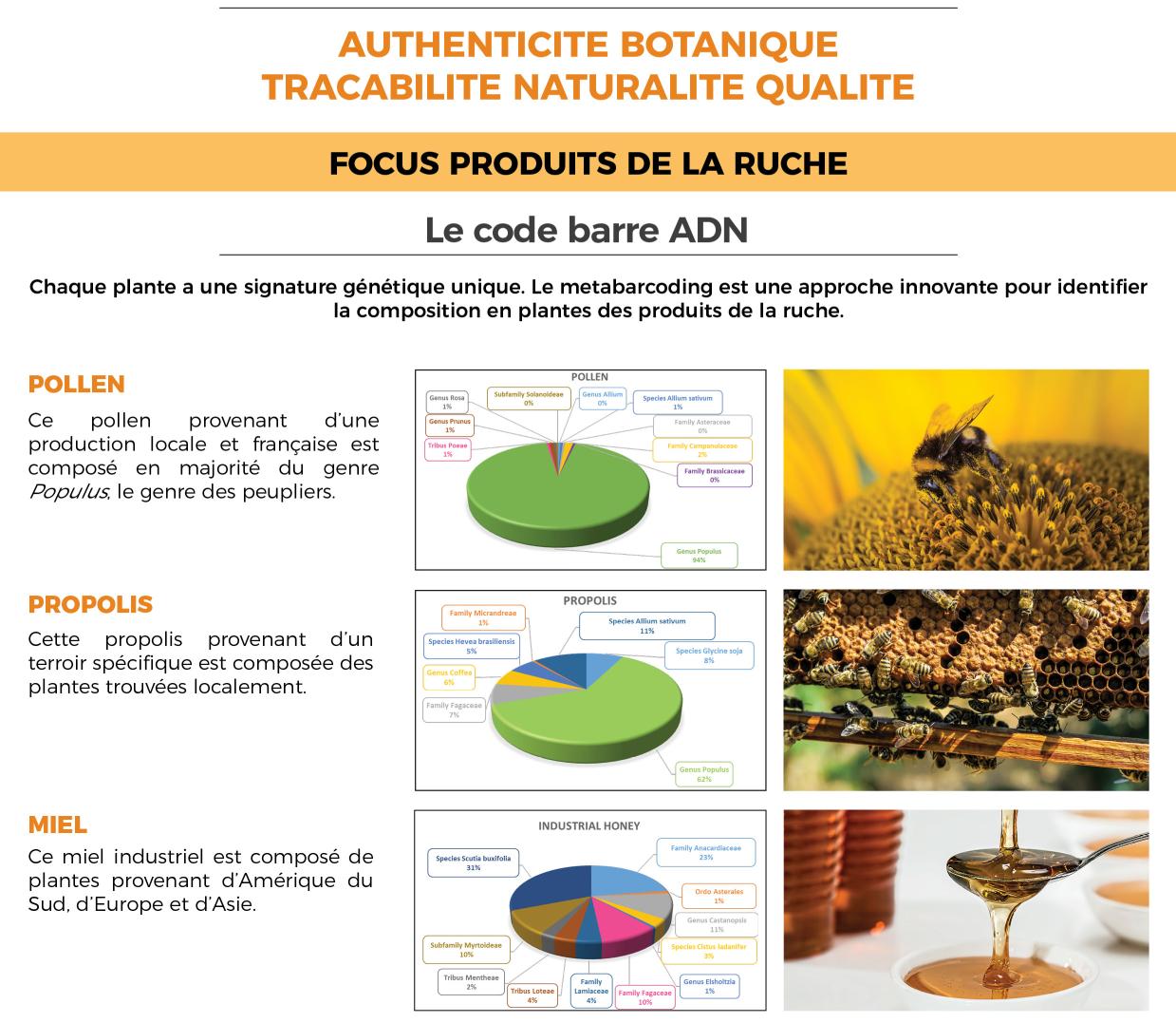 Expertise miel, exemple de résultats