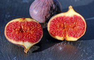 Authenticité et traçabilité génétique chez les plantes, exemple de la figue