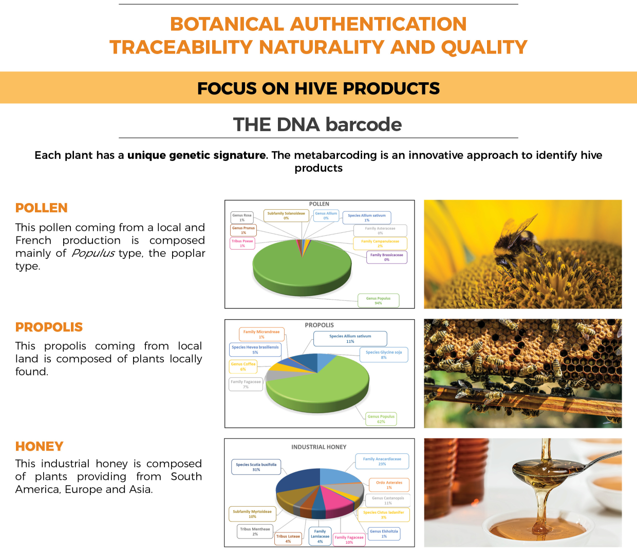 Hive products Traceability